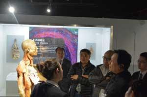 唐国强老师参观展览