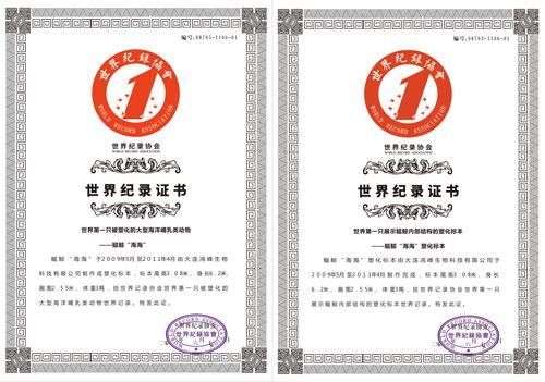世界纪录证书